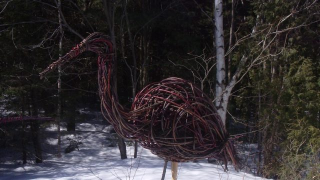 https://montrealcampus.ca/wp-content/uploads/2012/10/oiseau-échassier-e1349912649275-640x360.jpg
