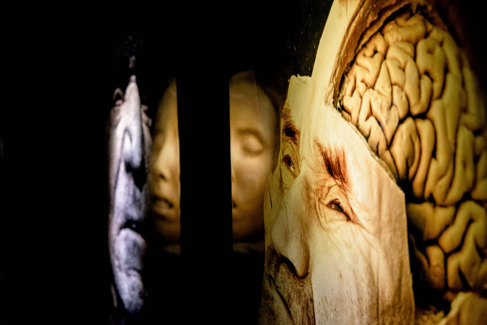 Humanorium: Musée de la mort