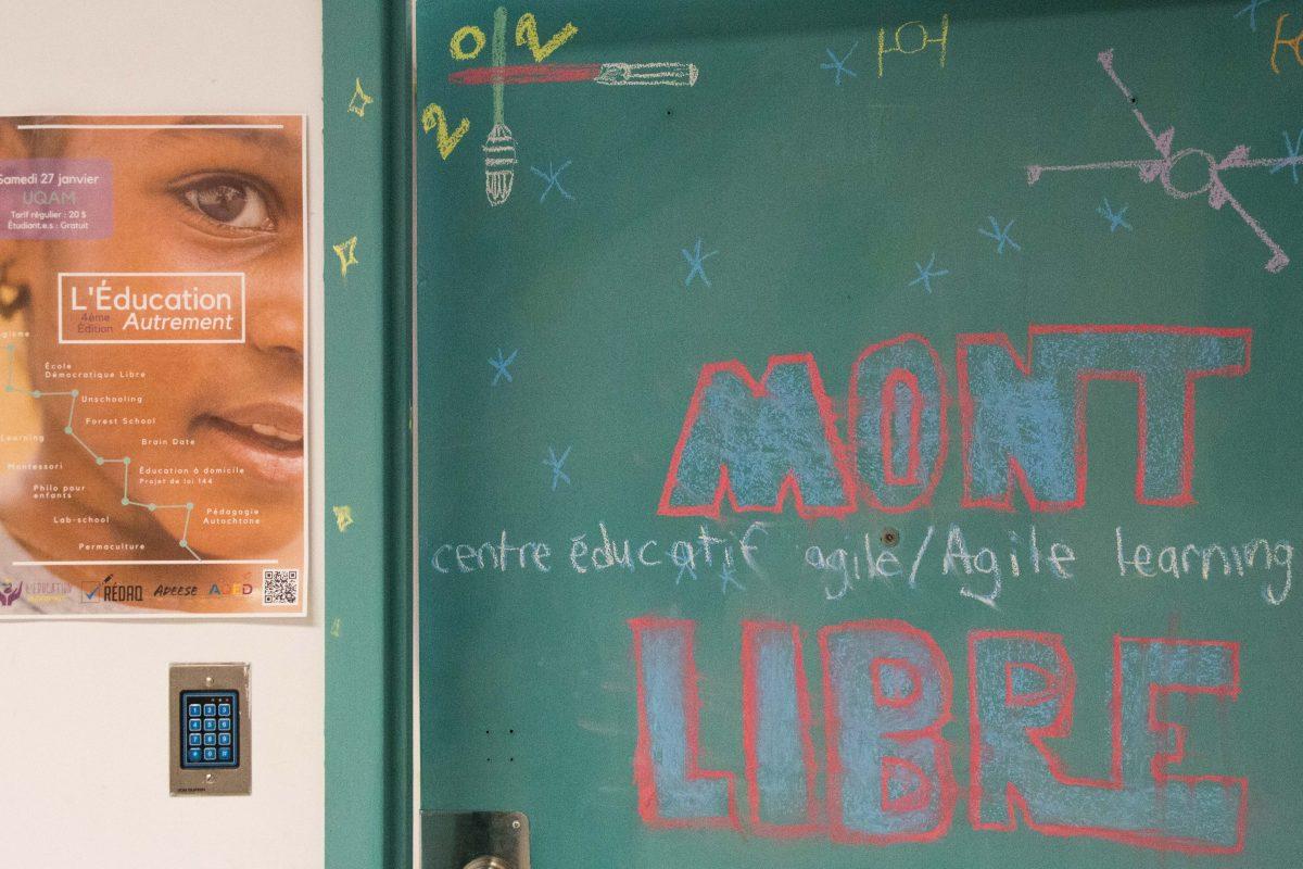 Écoles démocratiques : apprendre librement