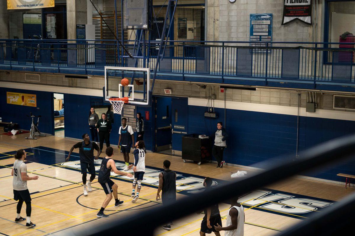 Des équipes de basketball renouvelées chez les Citadins