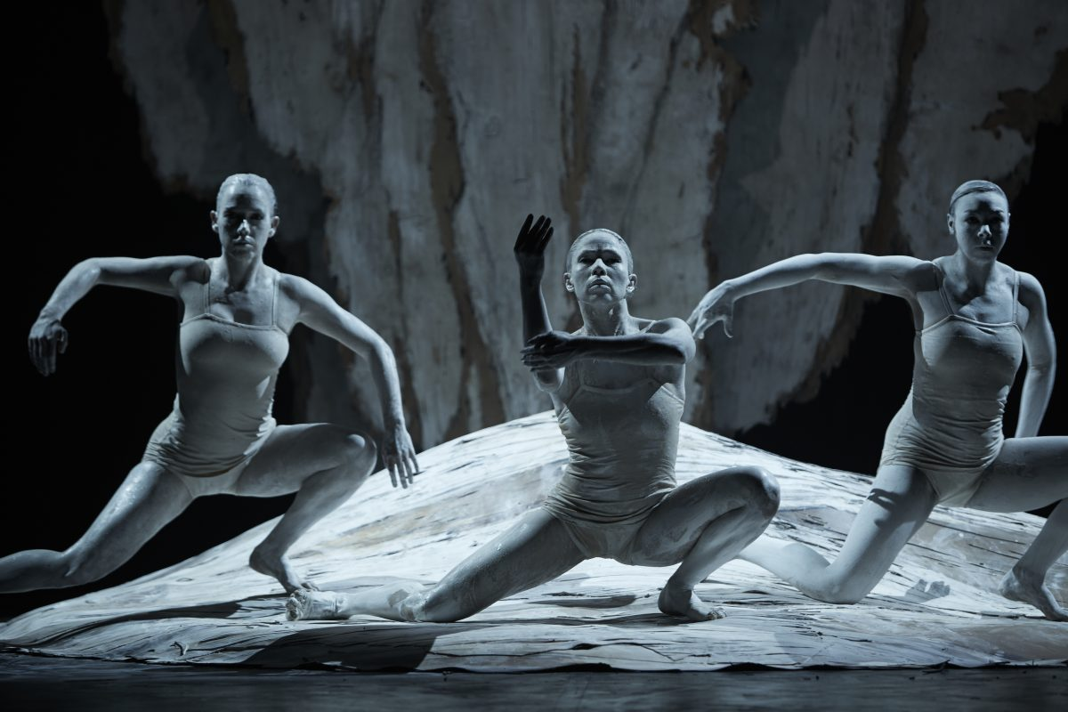 Un rituel contemporain : le pari du Bangarra Dance Theatre