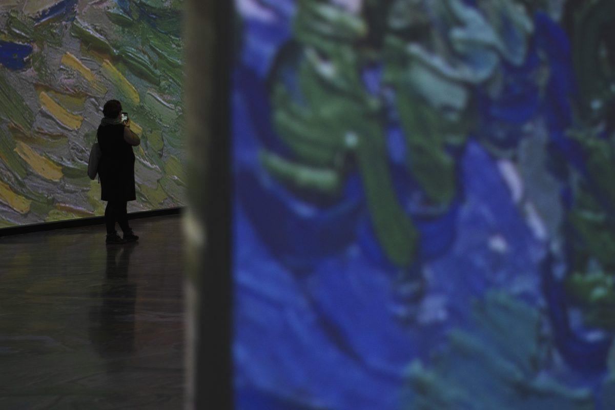 <i>Imagine Van Gogh</i>: à la découverte de la Provence